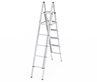 Dual Output Aluminum Extension Ladder
